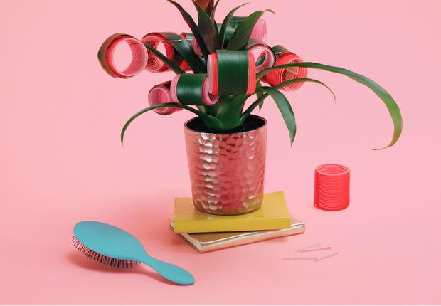 2CG_S1_CLP_Beauty_Haircare_071119_wl