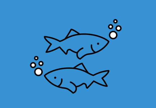 2CG_S3_CR_TK_Environment_Ocean_050220_wl