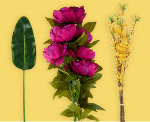 G11_CLPMothersday_flowers_060219_wl