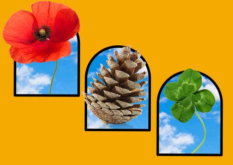 TEA_CP_KidsActivities_S7_Hunt_150420_mp